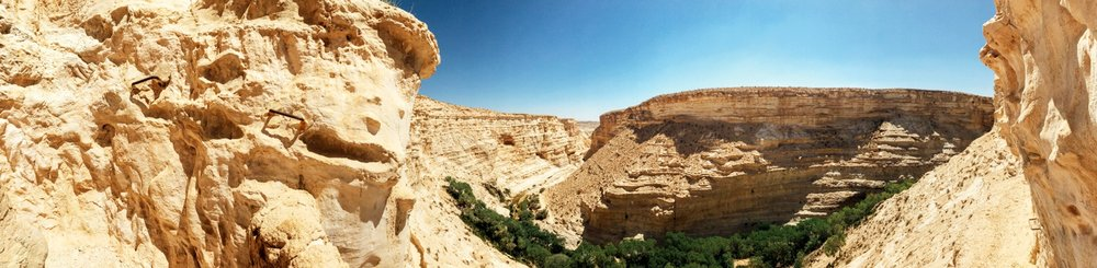 Negev Desert, Israel in June