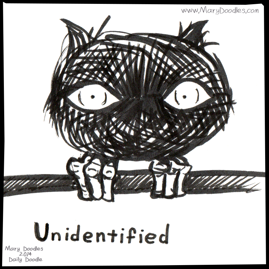 DailyDoodle-0114-Unidentified