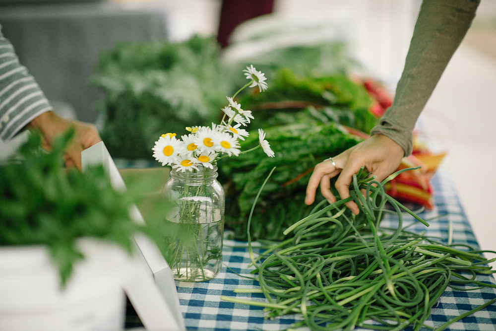 Toronto-Farmers-Market-Engagement-Photography-Vegetables-Detail-Shot-Couple-Daisies.jpg