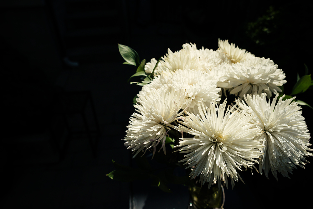 Dramatic, flower detail from vintage Toronto Wedding