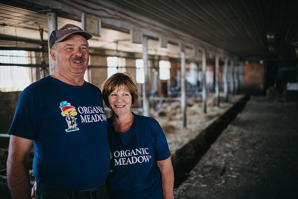 Organic dairy farmers Ron and Deb Vice, of Birchwind Holsteins near Oshawa, celebrate along with their cows during the first pasture of spring. Ron Vice is a third-generation farmer. When his dairy cows go out to pasture, there's a lot less work for him to do in the barn. - The Toronto Star