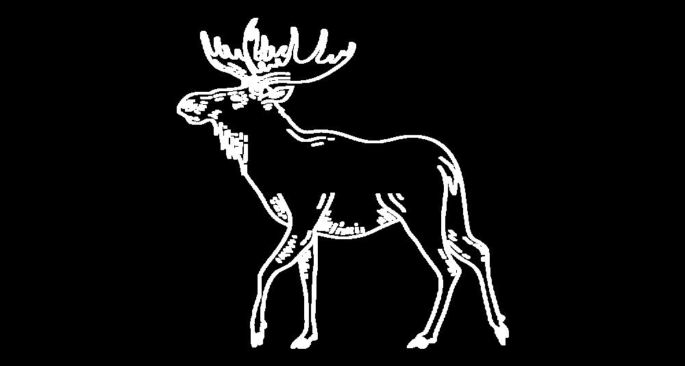 moose-big-white.png