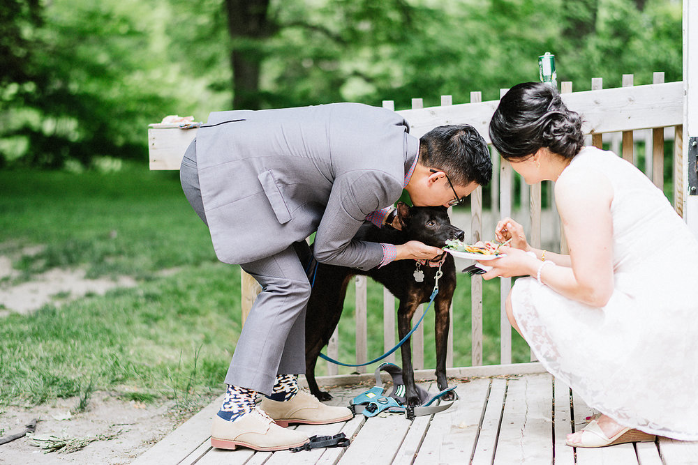 Unique-Wedding-Cake-Ideas-Toronto-Vintage-Bride-Outdoor-Forest-Wedding-Venue-High-Park-Downtown-Toronto_Candid-Editorial-Documentary-Wedding-Photographers-Low-Key-Feeding-Dog-Kissing-Puppy.jpg