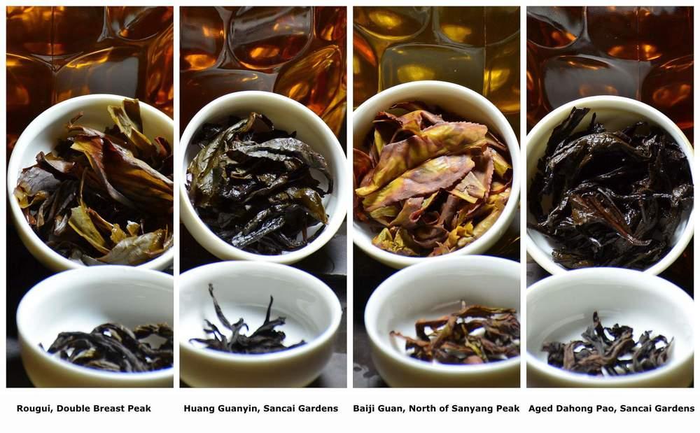 Standard Rock tea session-001.jpg