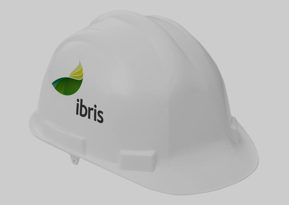 FBD_Logo_Ibris2.jpg