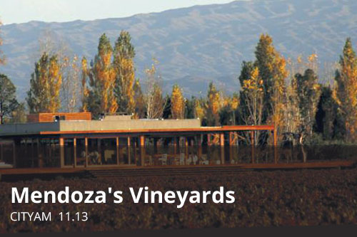 Mendoza's Vineyards | CityAM