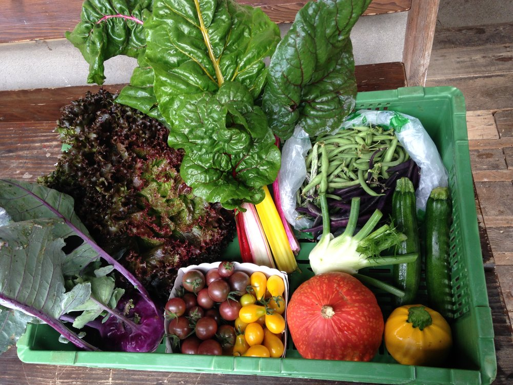 GemüseAbo2.jpg