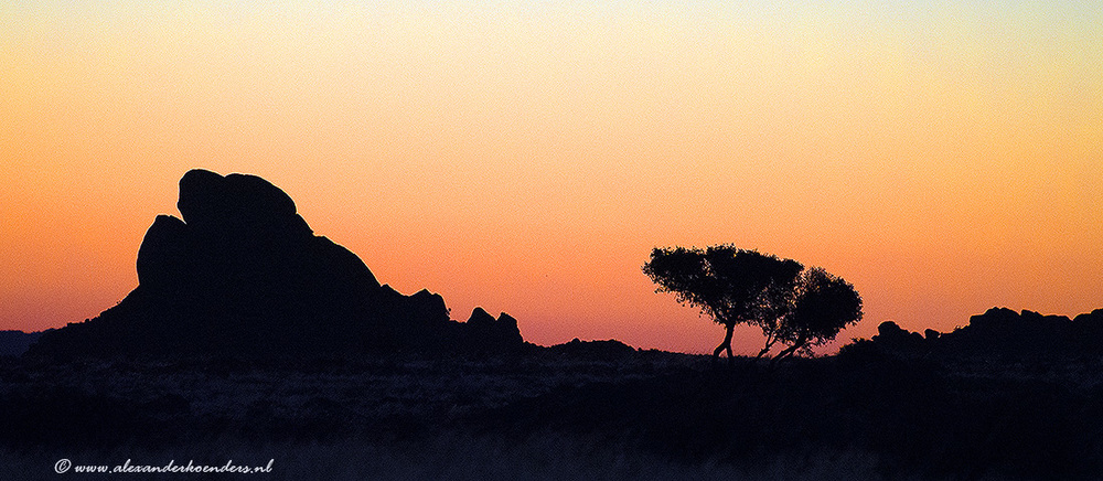 Namib dessert
