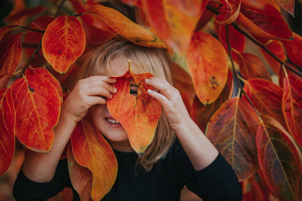 Child-Photographer-at-Raeburn-Orchards.jpg