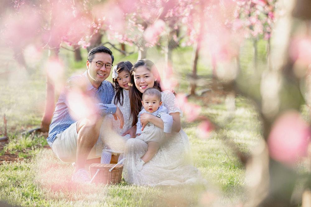 Blossom-Family.jpg