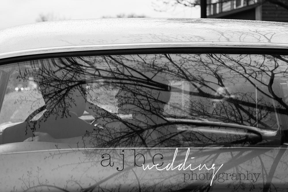 AJBC-Photography-Lexington-michigan-Wedding Photographer-bride-groom-beach-wedding-portsanilac-michigan.png
