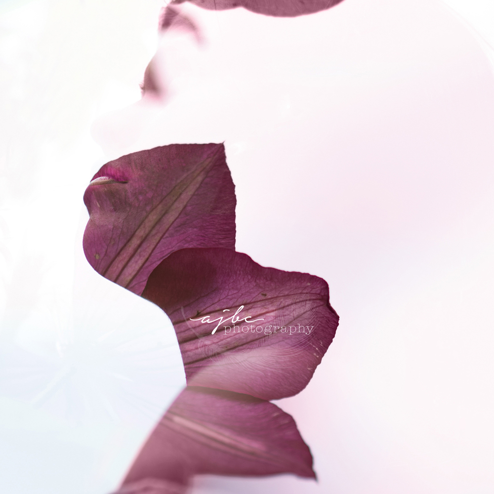 Double Exposure Nature Beauty Port Huron Michigan Photographer flower petals 4.jpg