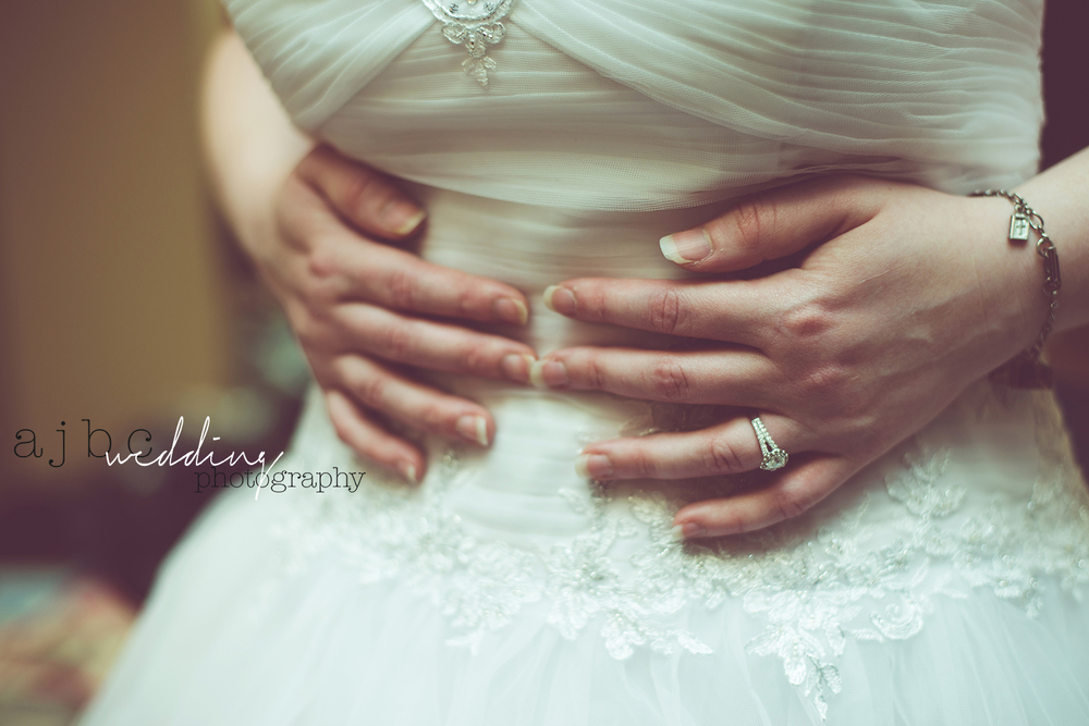 ajbcphotography-port-huron-michigan-wedding-photographer-love-bride-groom-family-michigan-wedding-photographer-close-up-wedding-dress.jpg