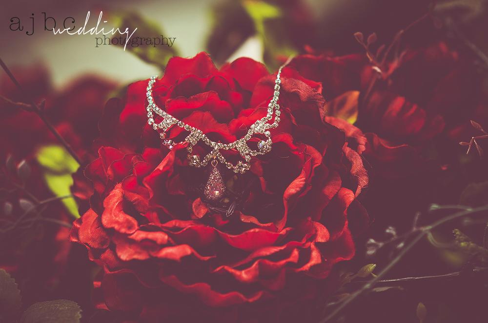 ajbcphotography-port-huron-michigan-wedding-photographer-love-bride-groom-family-michigan-wedding-photographer-brides-jewerly.jpg