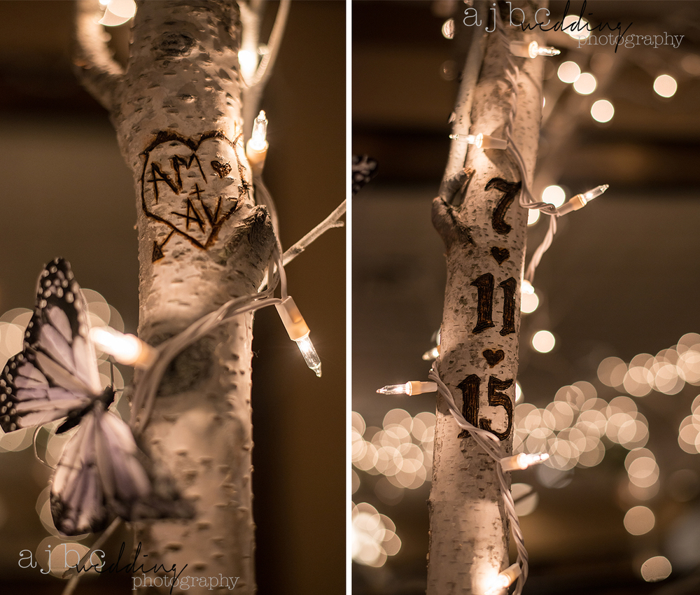 ajbcphotography-port-huron-michigan-wedding-photographer-love-bride-groom-family-michigan-wedding-photographer-love.jpg