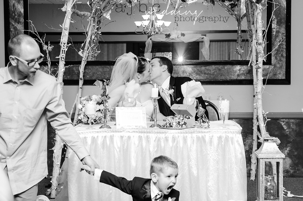 ajbcphotography-port-huron-michigan-wedding-photographer-love-bride-groom-family-michigan-wedding-photographer-reception.jpg