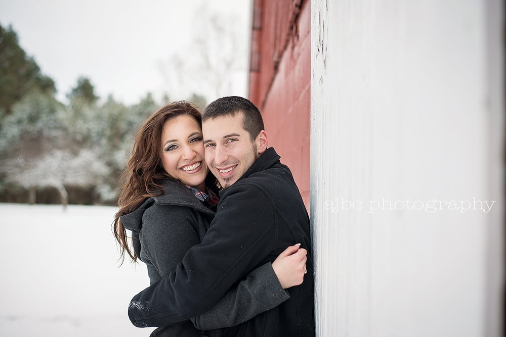 Port Huron Wedding Engagment Photographer.jpg