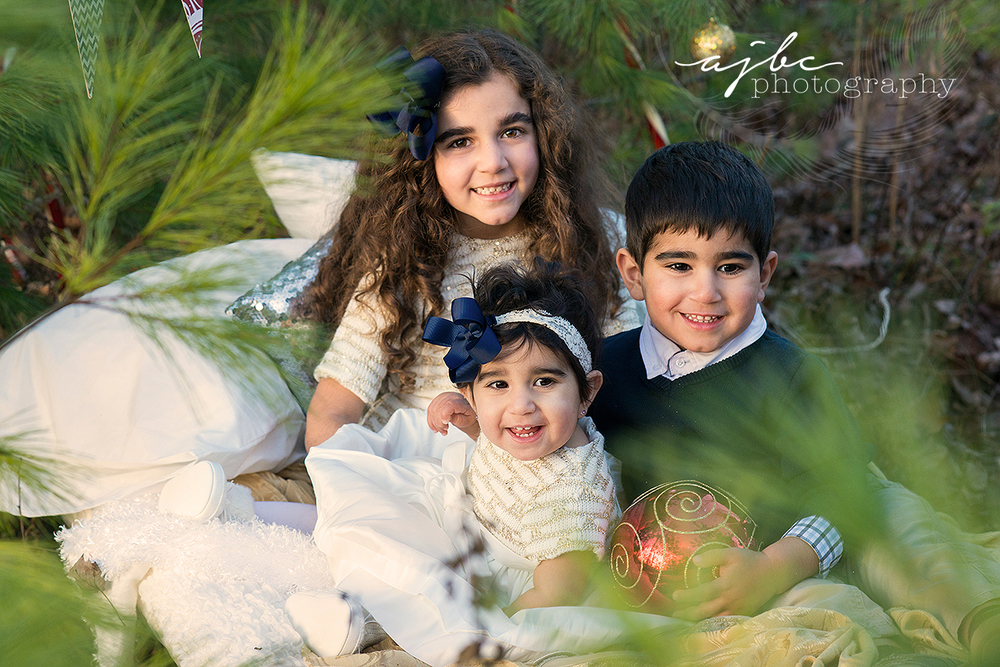 ajbc photography port huron michigan outdoor family photographer.jpg