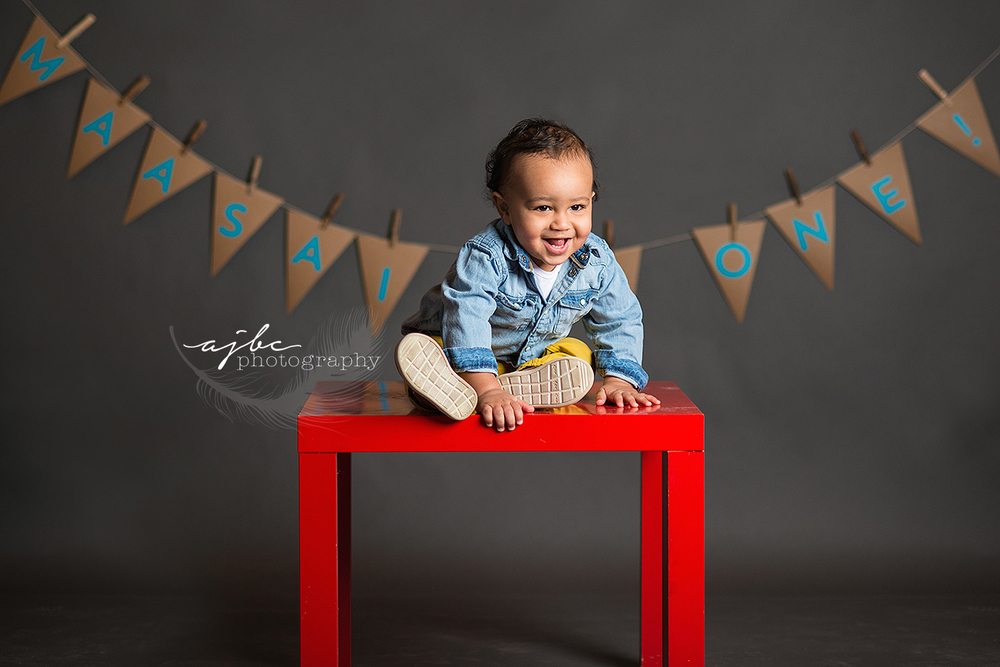 one year old boy photoshoot.jpg
