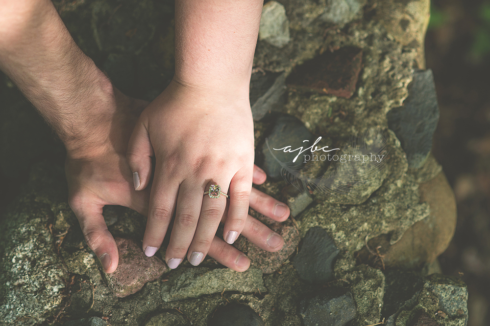 michigan outdoor engagement photoshoot.jpg