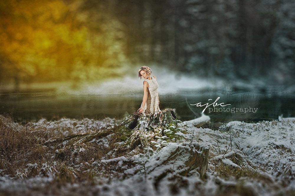 grayling michigan outdoor winter photoshoot dress shoot fine art editing.jpg