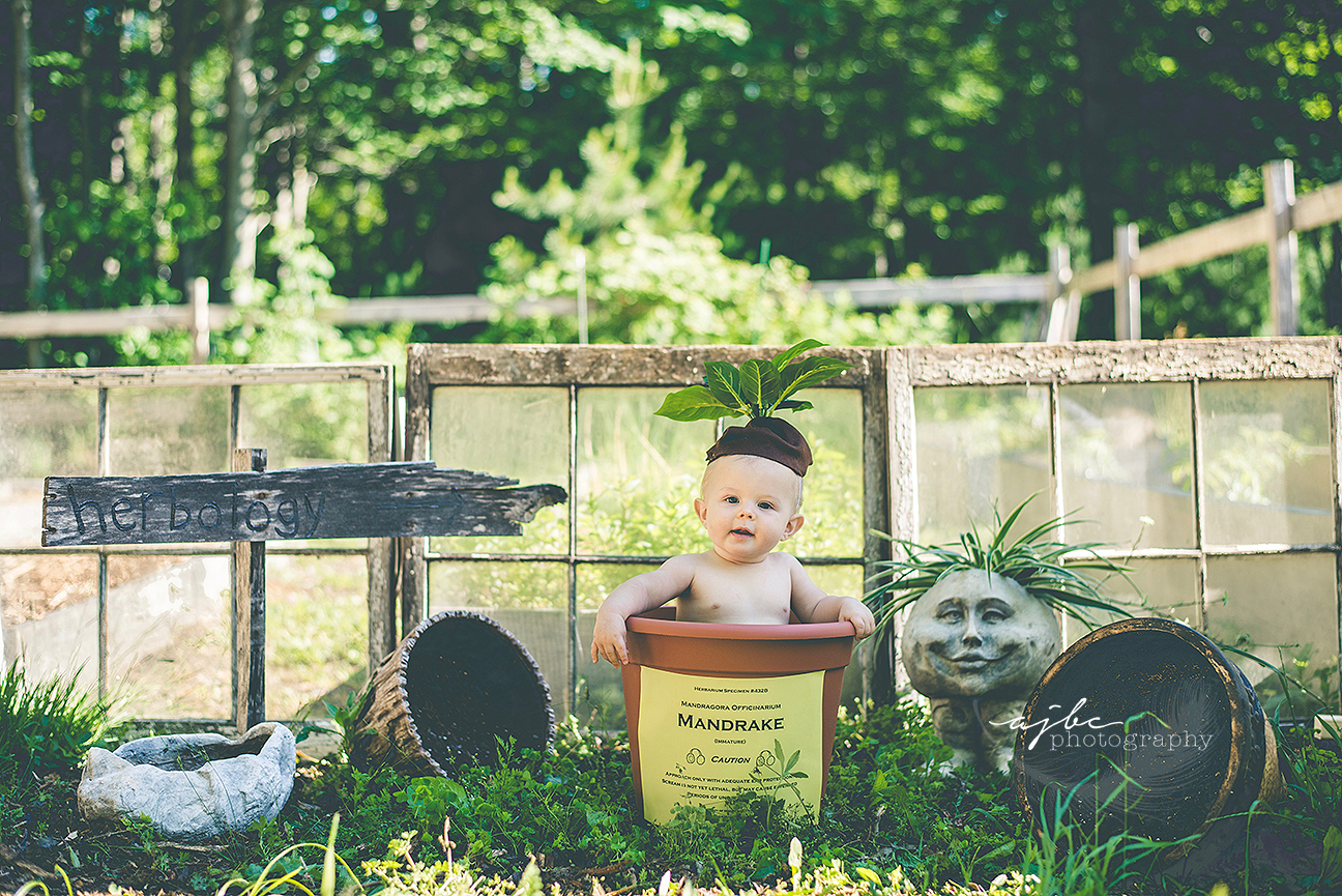 6 Month Old Harry Potter Inspired Photoshoot Blogajbc Photography