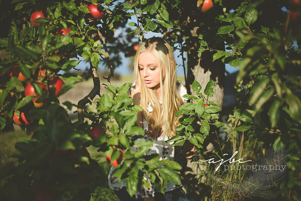 best senior portrait photographer port huron michigan senior shoot at apple orchard.jpg