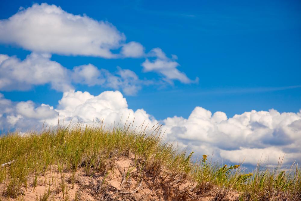 bigstock-Sand-dune-6764032.jpg