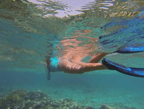 snorkel-g.jpg