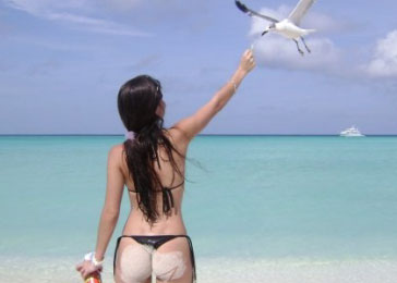 Bird-watching-losroques.jpg