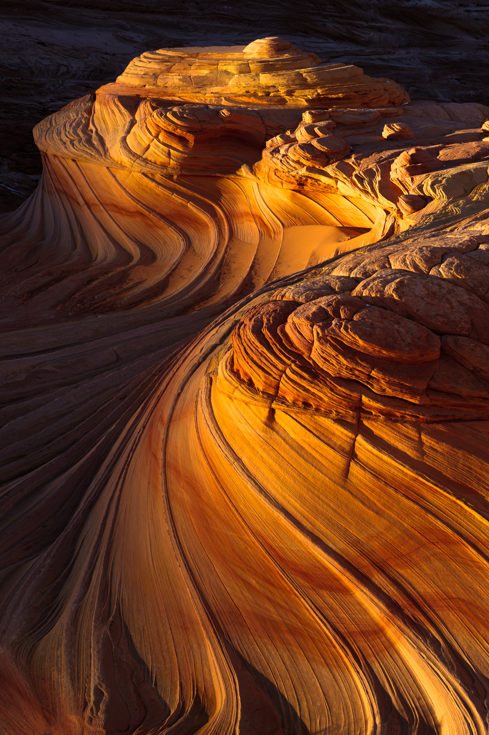 Twists of Time, Paria/Vermillion Cliffs Wilderness, Arizona