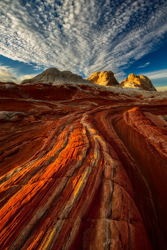 Paria/Vermillion Cliffs Wilderness