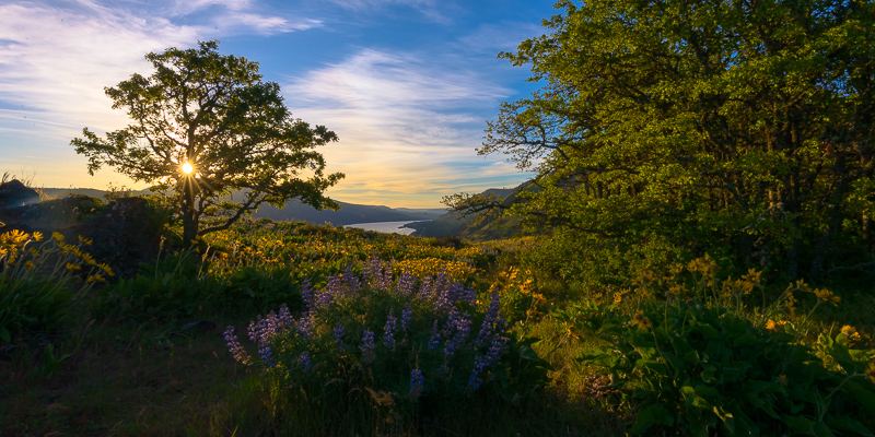 Sunrise over Rowena Crest, Columbia River, Oregon