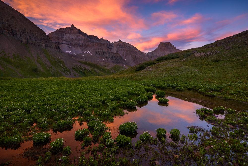 Colorado Wild