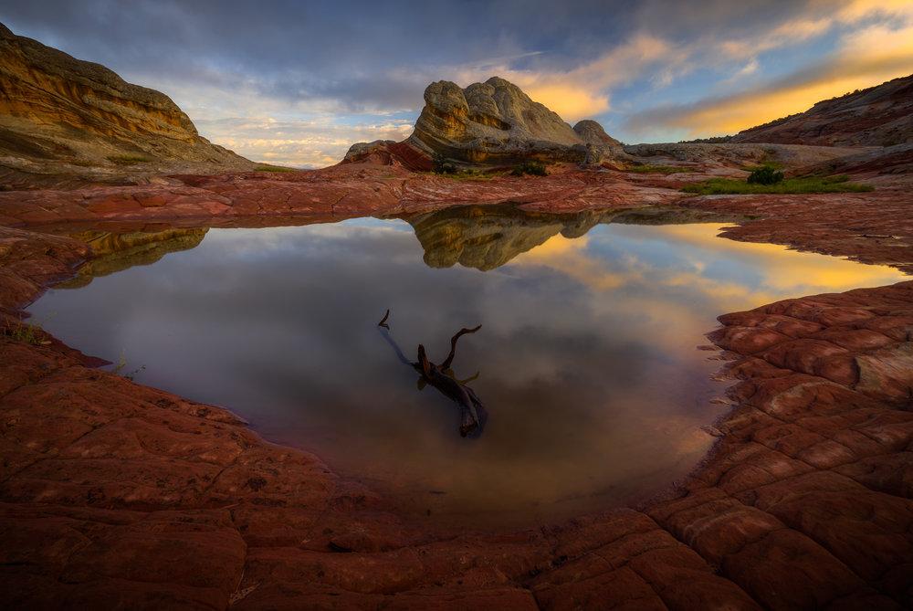 Colorado Plateau/Desert Southwest