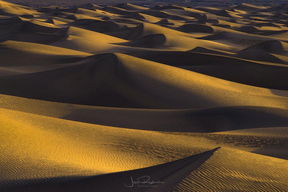 Desert & Basin