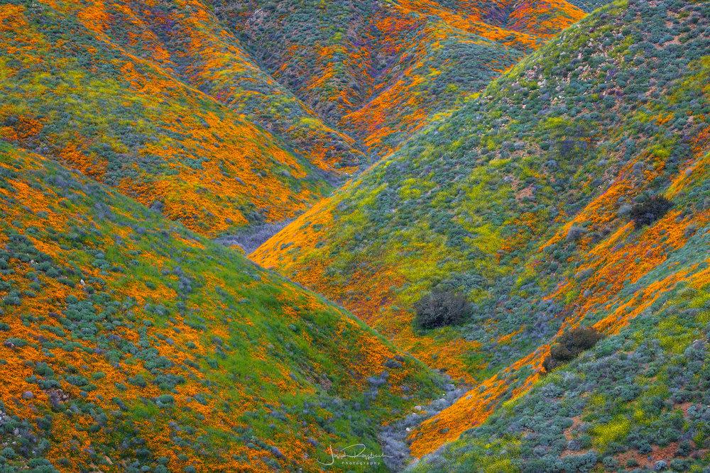 Rainbow Hills, Walker Canyon, Lake Elsinore