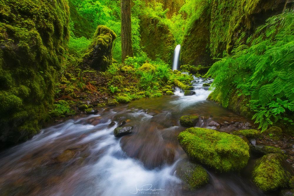 - Waterfalls & Streams