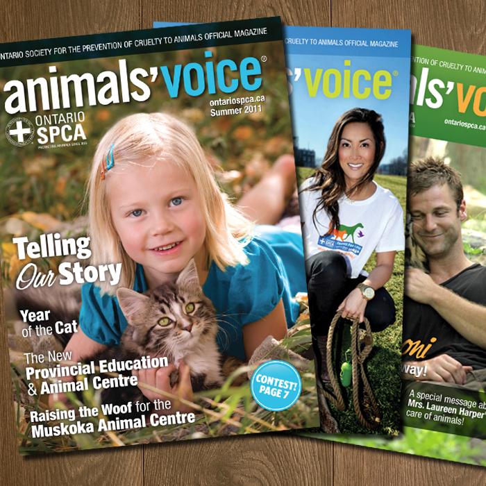 Animals'Voice Magazine