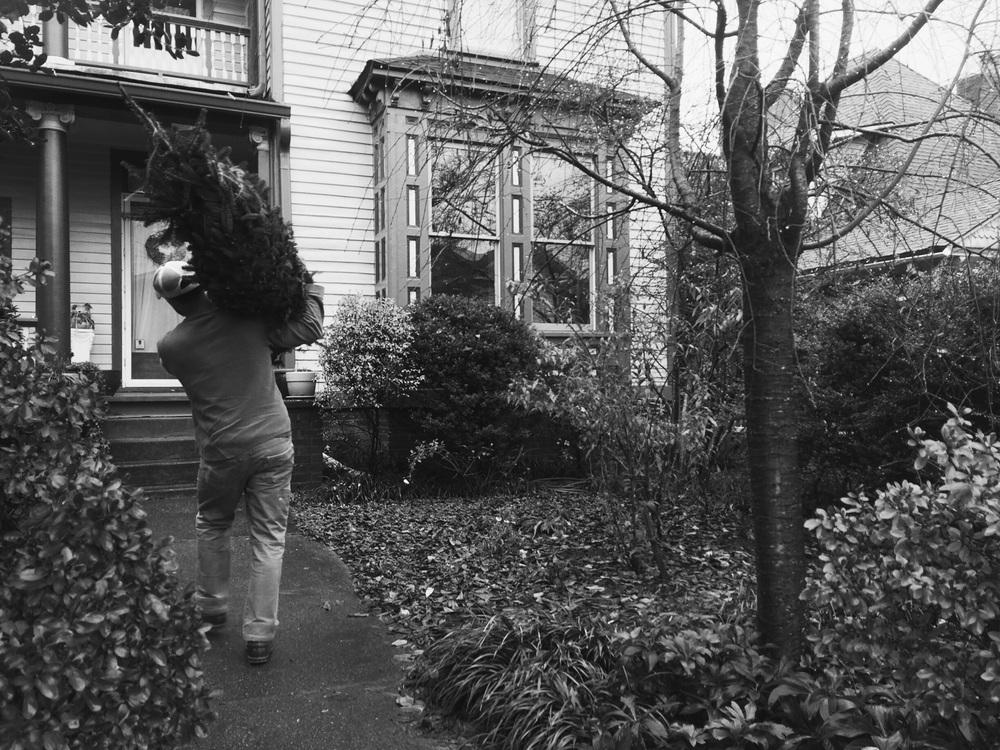 Raise the Tree in Fort Sanders