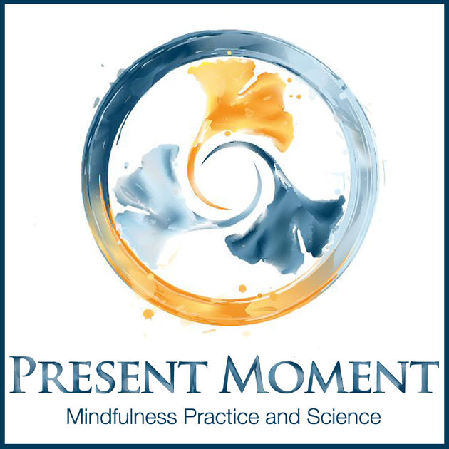 Podcast 65: Present Moment Mindfulness, with Ted Meissner    Ted hosts one of the most influential Podcasts on Mindfulness and has over 300 conversations with experts, practitioners and influencers in the Mindfulness space. Ted is also a Mindfulness teacher and you can find out about his Live MBSR courses and online material at presentmomentmindfulness.com