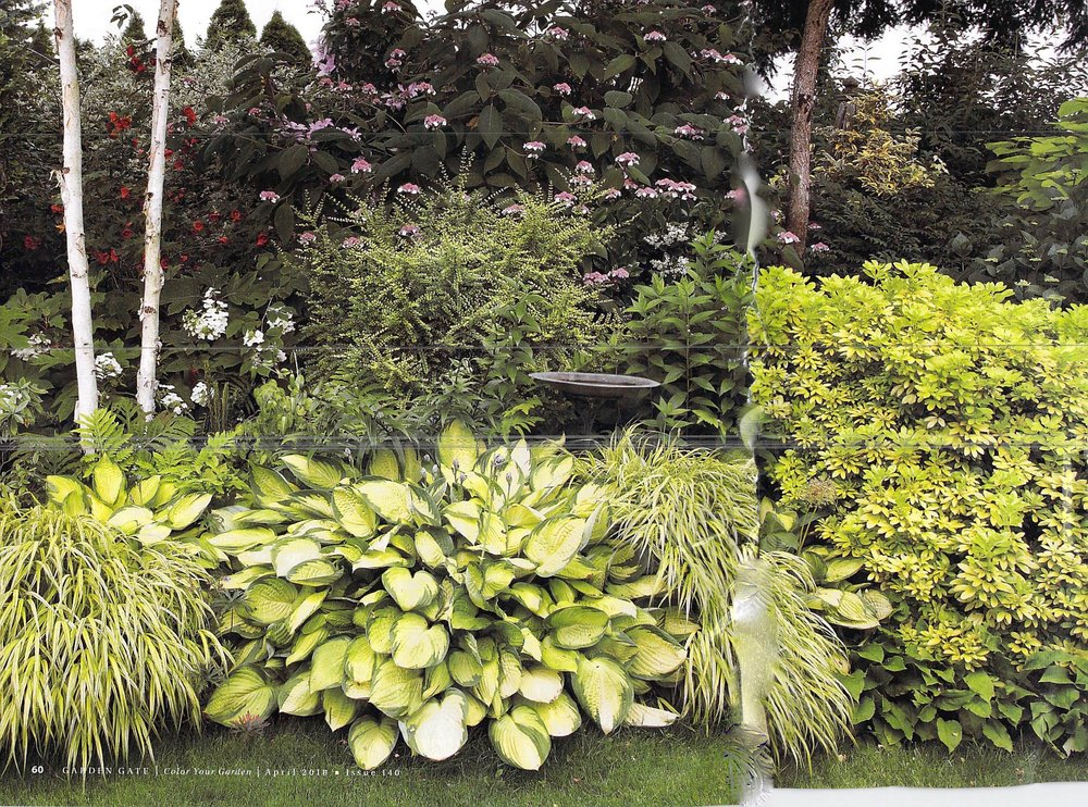 Gardening Wimbledon Garden Club
