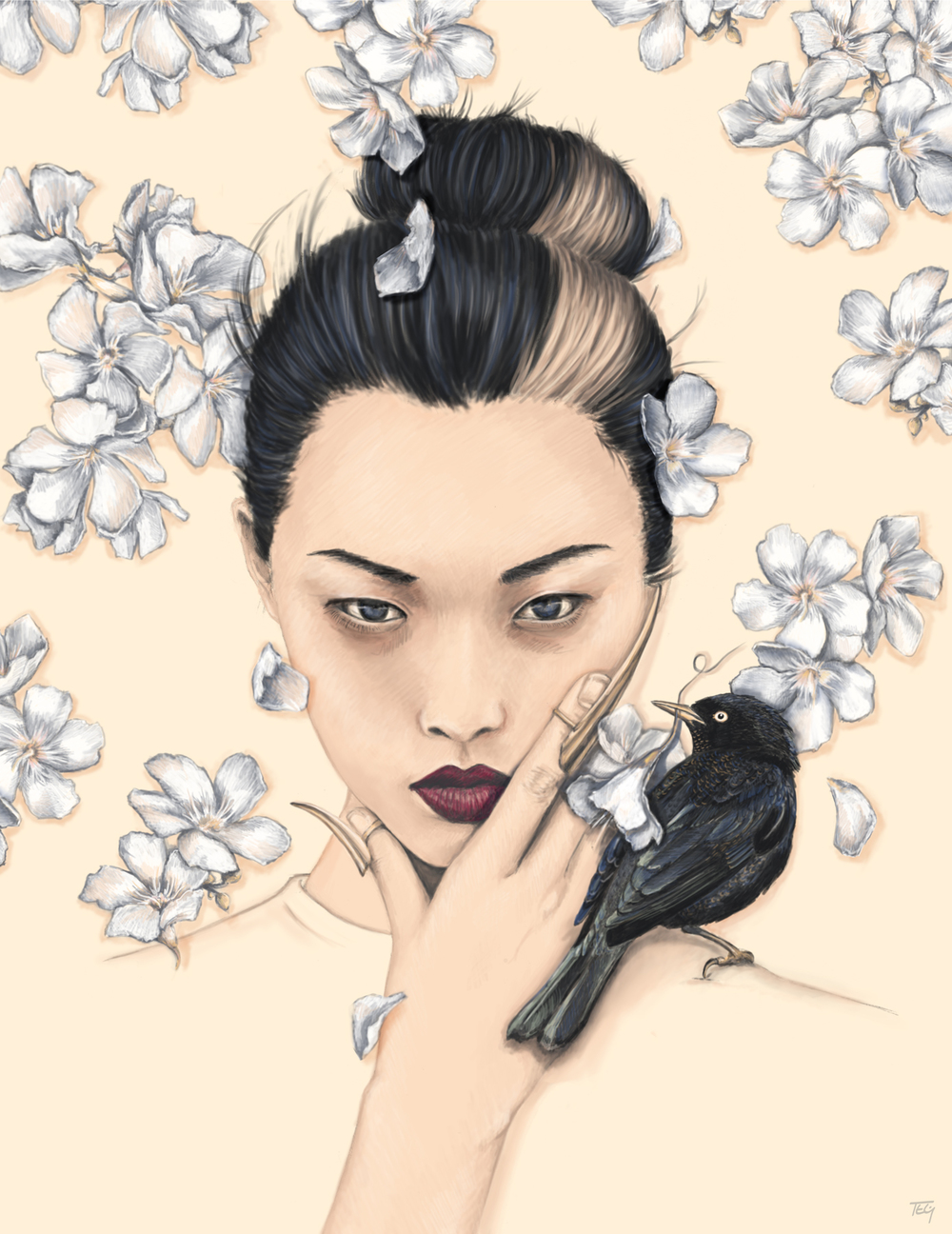 White Oleander - graphite & digital painting, 2015