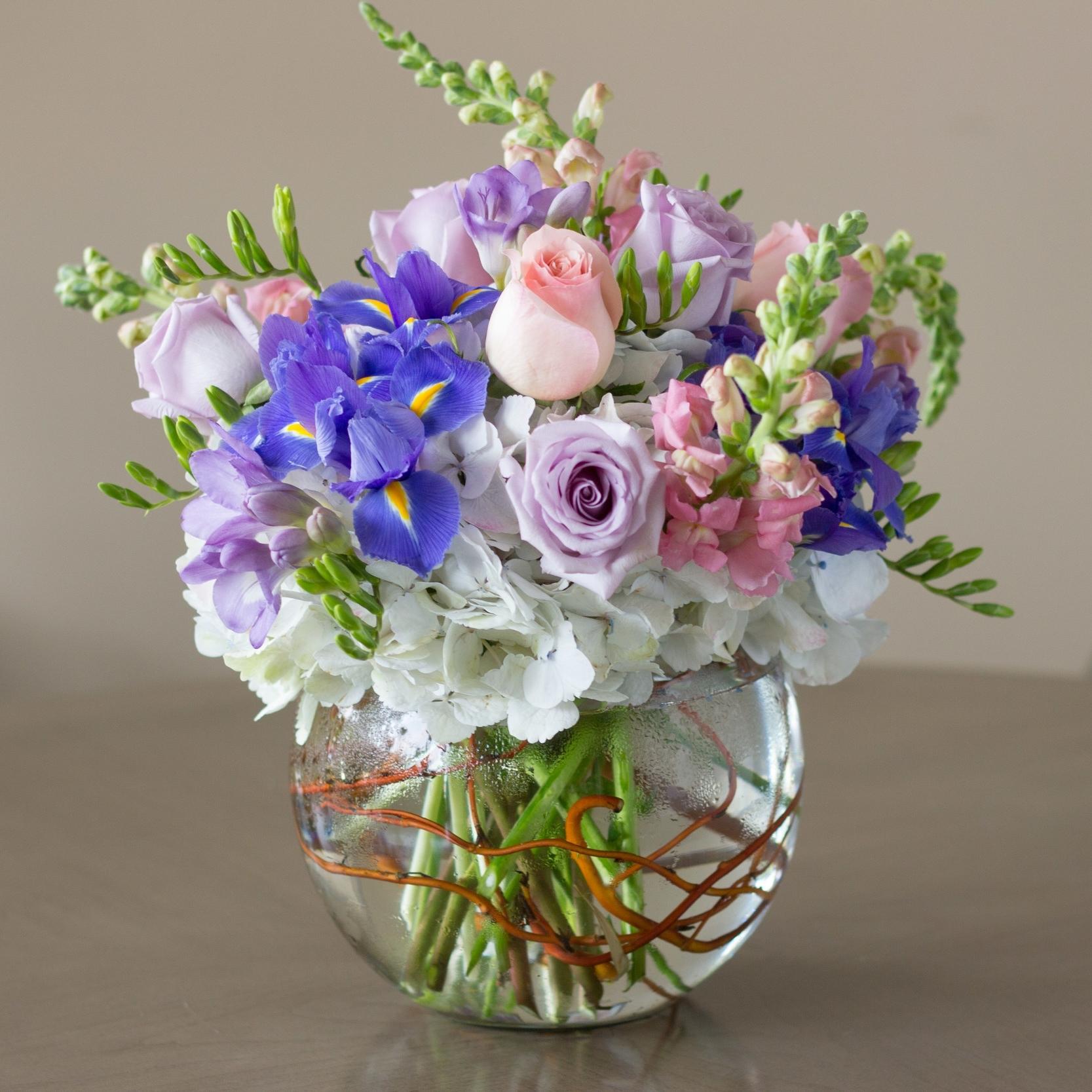 hydrangea & iris