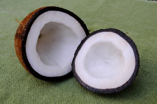 coconut 1-jim occi.jpg