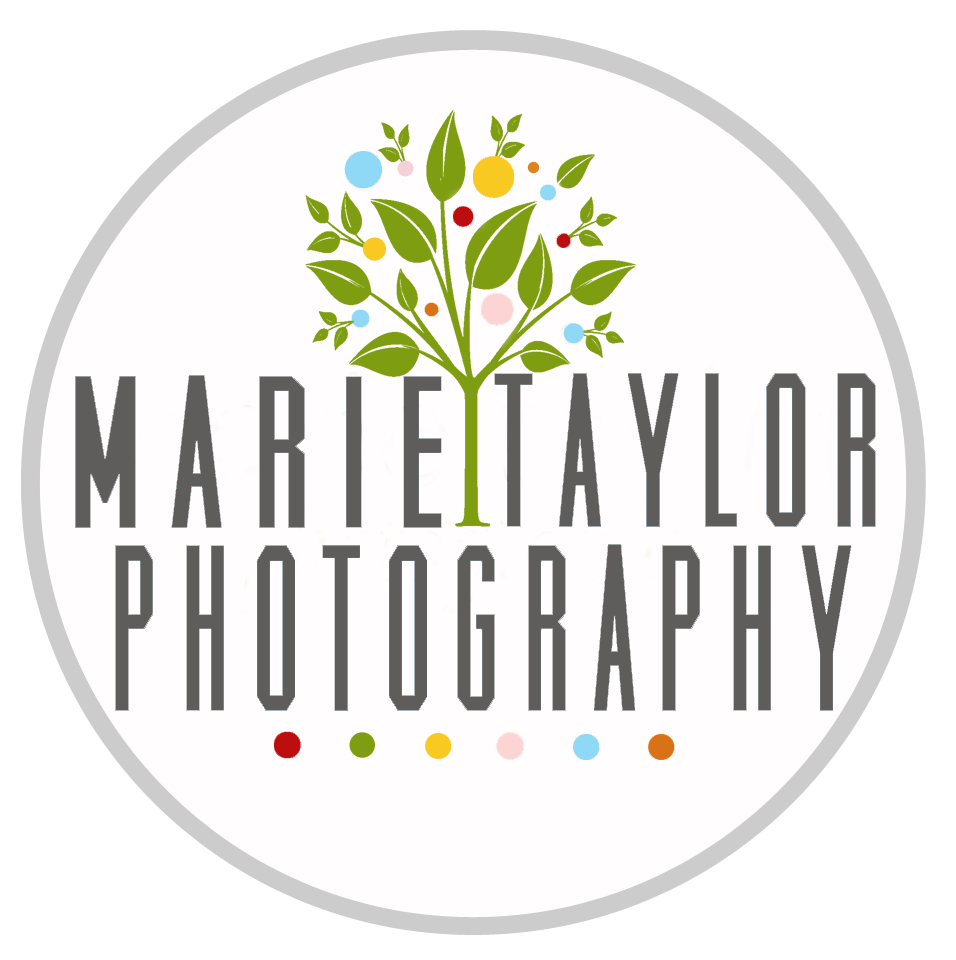 marie taylor photography