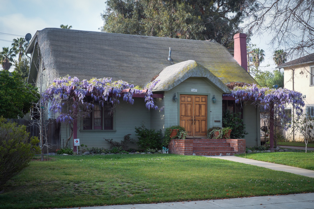 1922-Cottage-with-Wisteria.jpg
