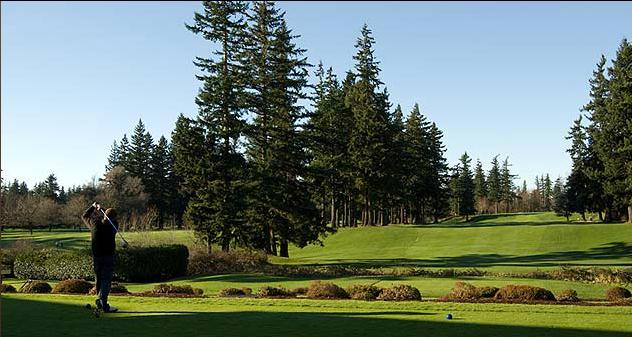 Bellingham_Golf_Country_Club_-_Bellingham_351697.jpg