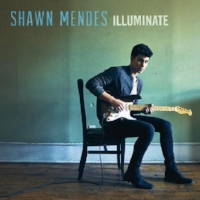 Shawm Mendes - Illuminate Assistant Mix Engineer (Mercy) Island Records