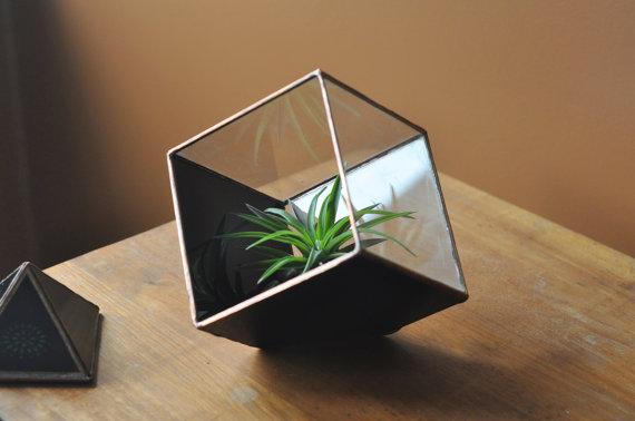 ABJ Glassworks  terrarium , $95